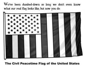 The civil peacetime flag of the United States, showing blue stars on white background and 13 vertical stripes.